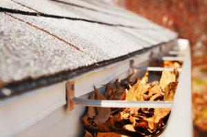 fall leaves in gutters